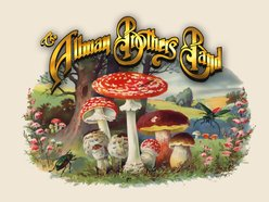 Image for BLUE SKY: A Tribute To The Allman Brothers Band