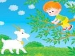 Image for Young Kids & Old Goats