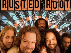 Image for Rusted Root