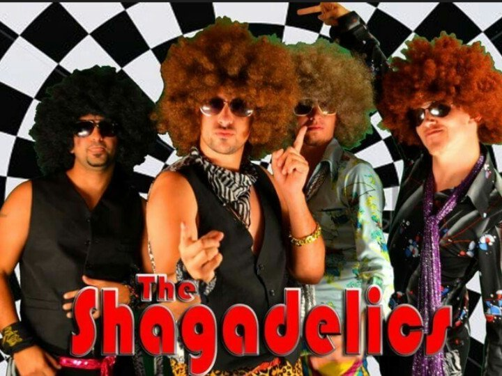 Image for The Shagadelics