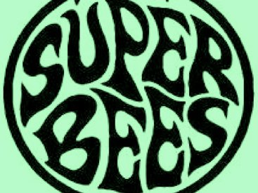 Image for The Superbees