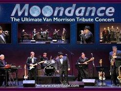 Image for Moondance - The Van Morrison Tribute