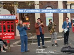 Image for The Wonderful Underpants Orchestra