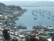 Morro Bay Festivals