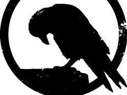 Stone Crow
