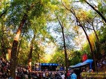 Wanee Festival (Spirit of the Suwannee Music Park)