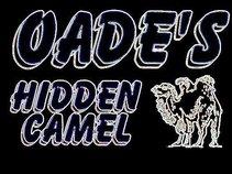 Oade's Hidden Camel