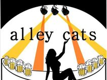 Alley Cats Unplugged