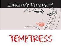 Lakeside Vineyard & Winery