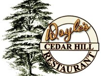 Doyle's Cedar Hill Restaurant and Tiki Bar