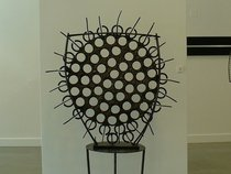 Chris White Gallery