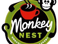 Monkey Nest