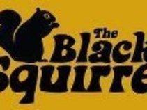 The Black Squirrel