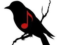 Blackbird Music Minneapolis
