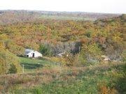 Forni Family Farm