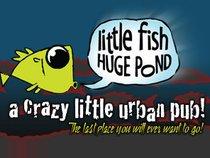 Little Fish Huge Pond