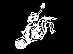 Buckin' Harley's