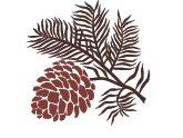 Dunwoody Pines