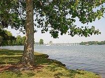 The Cove in Concord Park