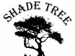 Shade Tree Cusoms & Cafe