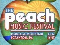 The Peach Music Festival