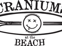 Craniums at the Beach