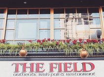 The Field Irish Pub