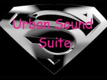 UrbanSoundSuite