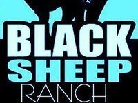 The blacksheep Ranch