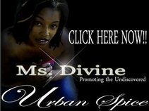 Atlanta Urban Spice