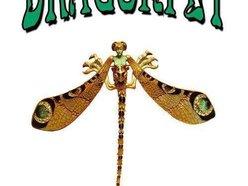 Dragonfly Nightclub