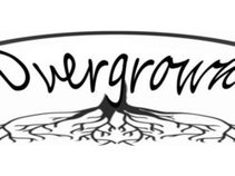 Overgrown Music and Arts Festival 2