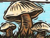 2008 Mushroom Festival