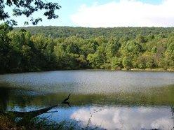 Blue Ridge Center for Environmental Stewardship