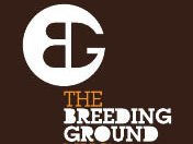 The Breeding Ground NYC - Recording Lounge